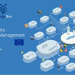 Feed management webinar ZangaBee _ Celigo _ 2020